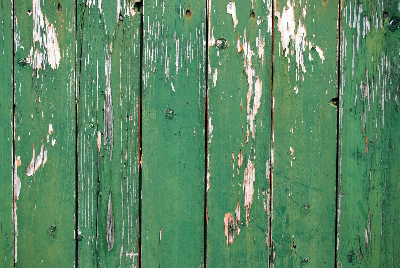 Old Peeling Knotted Pine Wood Green Painted