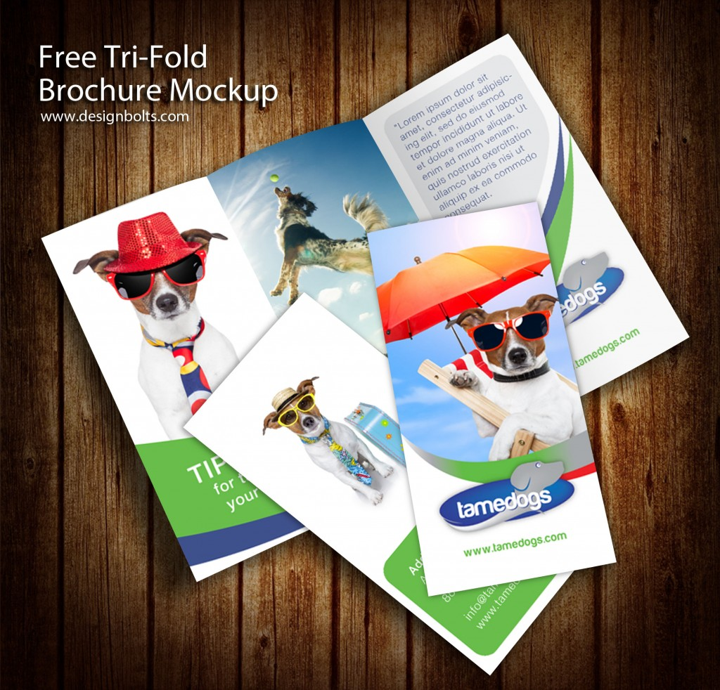 3 Painel de três dobras Flyer Template Mockups Brochura PSD